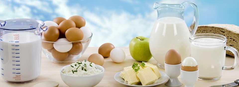 food-dairy